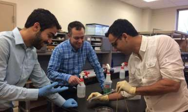 Navid Kazem (left), Jonathan Malen (center), and Carmel Majidi (right) demonstrate the elasticity of a strip of 'thubber,' a thermally conductive rubber material that represents a breakthrough for creating soft, stretchable machines and electronics.