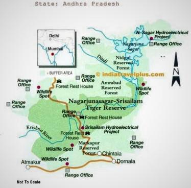 nagarjunasagar-srisailam-tiger-reserve